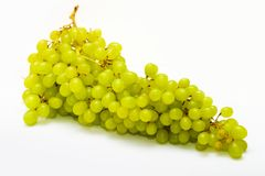 Bunch of ripe grapes Stock Images