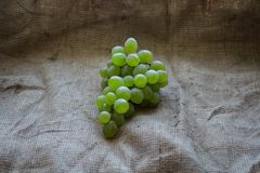 A bunch of ripe grapes against a burlap. Bunch of ripe grapes against a burlap royalty free stock photo
