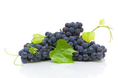 Bunch of ripe grapes with green leaves close up Stock Photo