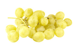 Bunch of ripe grapes Royalty Free Stock Images