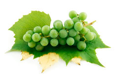 Bunch of Ripe Green Grapes with Leaf Isolated Royalty Free Stock Photos