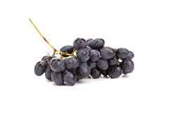 Bunch of ripe and juicy black grapes. Stock Images