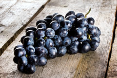 Bunch of ripe juicy blue grapes Stock Photos