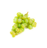 Bunch of ripe and juicy green grapes. Stock Photos