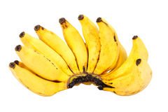 Bunch of ripe lady finger banana isolated on white Stock Photography