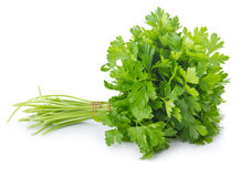 Bunch of ripe parsley isolated Stock Photos
