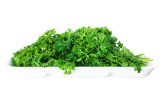Bunch of ripe parsley isolated on white background Stock Photography