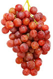 Bunch of ripe pink grapes. Bunch of ripe pink grapes isolated on white stock photos