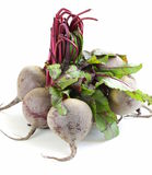 Bunch of ripe red beets Stock Photos