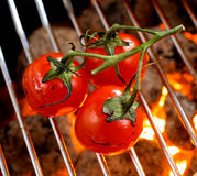 Bunch of tomatoes roasting over a fire Stock Images