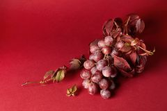 Bunch of ripe red grapes. With leaves isolated on red background Stock Photo