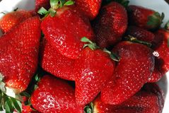 A bunch of ripe strawberries Stock Images