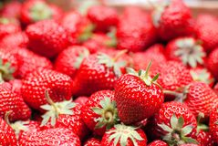 A bunch of ripe strawberries, side view Royalty Free Stock Photography