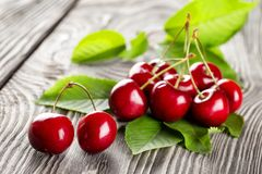 Bunch of ripe sweet cherries with leaves stock photography