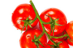 Bunch of ripe tomatoes closeup Royalty Free Stock Photos