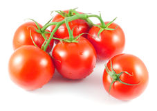 Bunch of ripe tomatoes with water drops Royalty Free Stock Photo