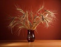 Bunch of ripe wheat ears Stock Photo