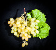 Bunch of ripe white grapes Royalty Free Stock Photography