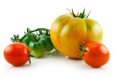 Bunch of Ripe Yellow, Red, Green Tomatoes Isolated royalty free stock image