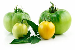 Bunch of Ripe Yellow Tomatoes with Leaves Isolated Stock Image