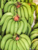 Bunch of ripened organic bananas. At farmers market, Thailand Royalty Free Stock Photos
