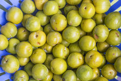 BUNCH OF RIPPED YELLOW PLUMS Stock Photos