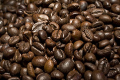 Bunch of roasted coffee closeup Royalty Free Stock Photo