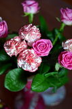 Bunch of rose and carnation flowers Royalty Free Stock Images