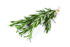 Bunch of rosemary Royalty Free Stock Photos