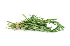 Bunch of rosemary isolated on white Royalty Free Stock Photo