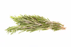 Bunch of rosemary tied up twine on a white background Stock Images