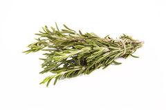 Bunch of rosemary tied up twine on a white background Stock Image