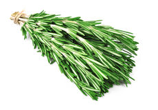 Bunch of rosemary Stock Photo