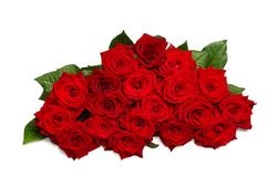 Bunch of roses. Isolated on the white background Royalty Free Stock Photo