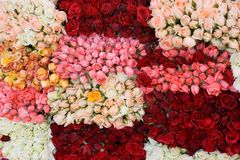 Bunch of roses 2 Royalty Free Stock Photos