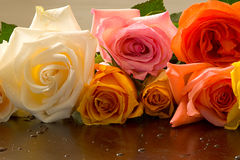 Bunch of Roses. Colorful bunch of roses royalty free stock photo