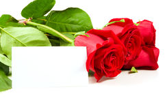A bunch of roses with a blank card Royalty Free Stock Photos
