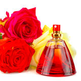 Bunch of roses and a bottle of perfume isolated on white Royalty Free Stock Photos