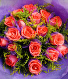 A bunch of roses with dews. A bunch of bright red flowers Royalty Free Stock Images