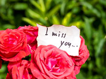 Bunch of Roses and Love Letter Royalty Free Stock Photography