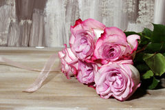 A bunch of Roses Royalty Free Stock Photos