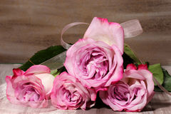 A bunch of Roses Stock Images