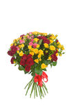 Bunch of roses on white background Stock Image