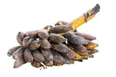 Bunch of rotten banana Stock Images