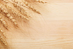 Bunch of rye ears close-up Stock Images