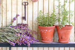 Bunch of sage and pots with herbs Royalty Free Stock Photos