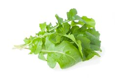 The Bunch of Salad Rocket Royalty Free Stock Images