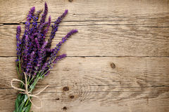 Bunch of salvia. On wooden background stock photos