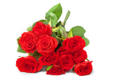 Bunch of Scarlet Roses Stock Images