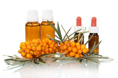 Bunch  sea buckthorn oil and bubbles out  it isolated. Stock Image